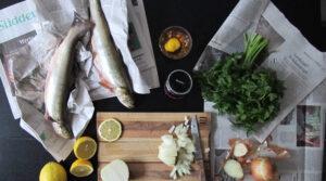 Nachrichten - Zeitung für Küchenabfall und eine Aktivbox